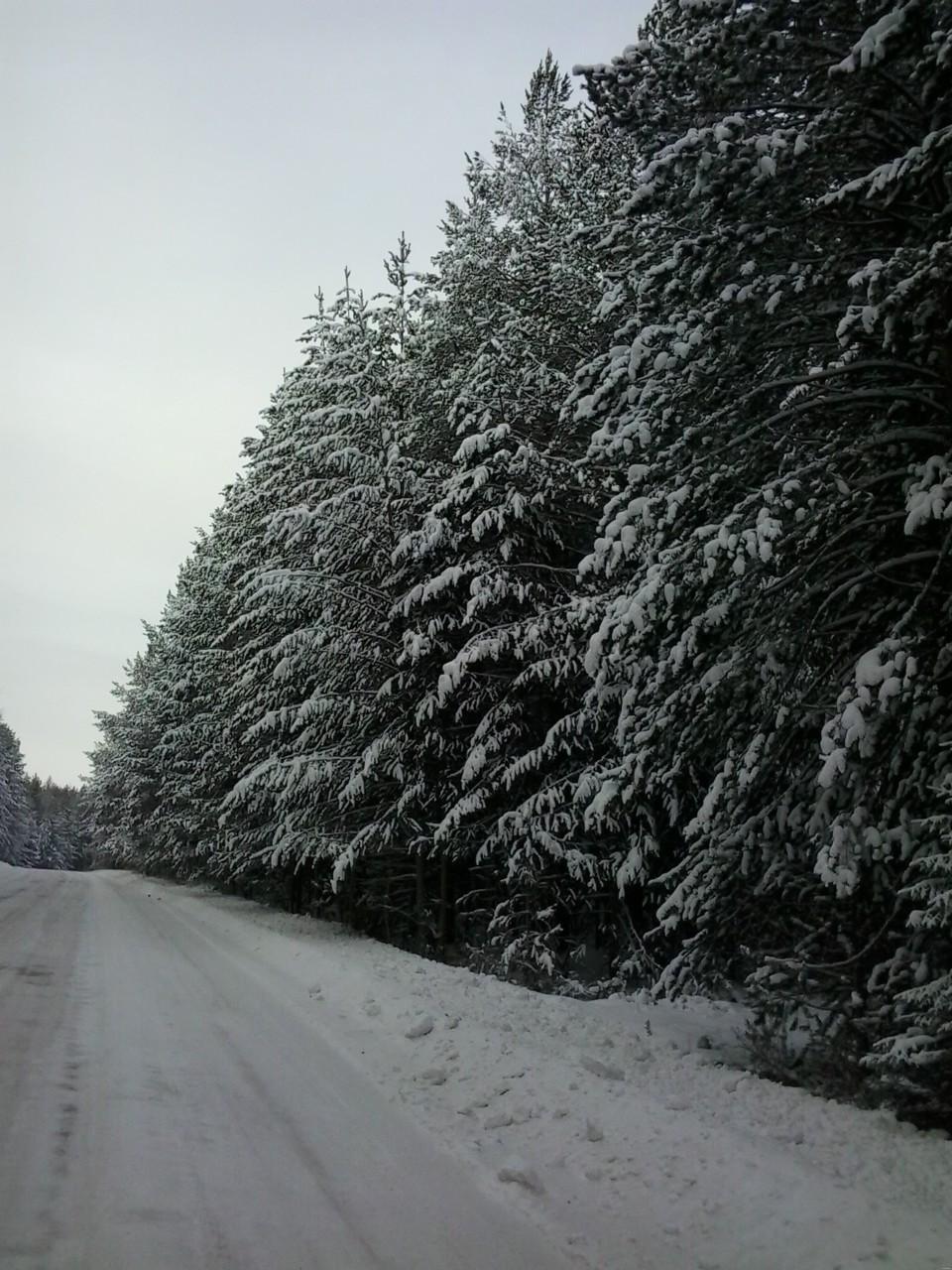 дорога на Покровск